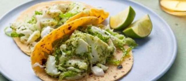 Halibut Fish Tacos with Cilantro Savoy Slaw