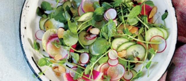 Pea Shoot Salad